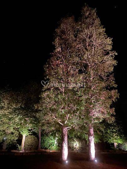 Éclairages nocturnes