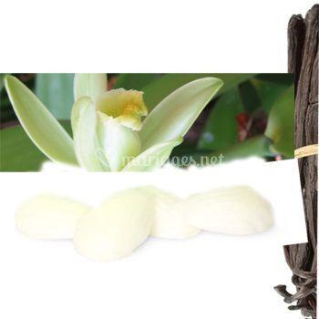 Parfum solide unité Vanille