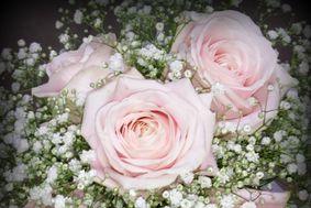 A vos fleurs