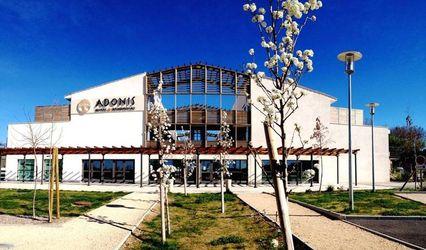 Adonis 1