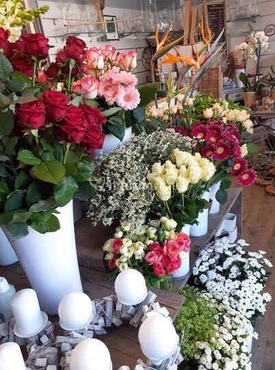 Aux Fleurs de Ma Passion