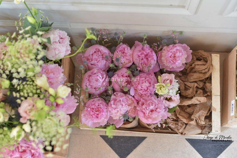 Cageots de fleurs