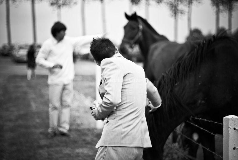 Hombres y caballos