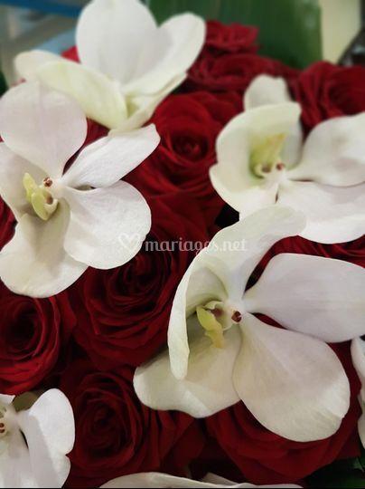 Bouquet vanda et rose