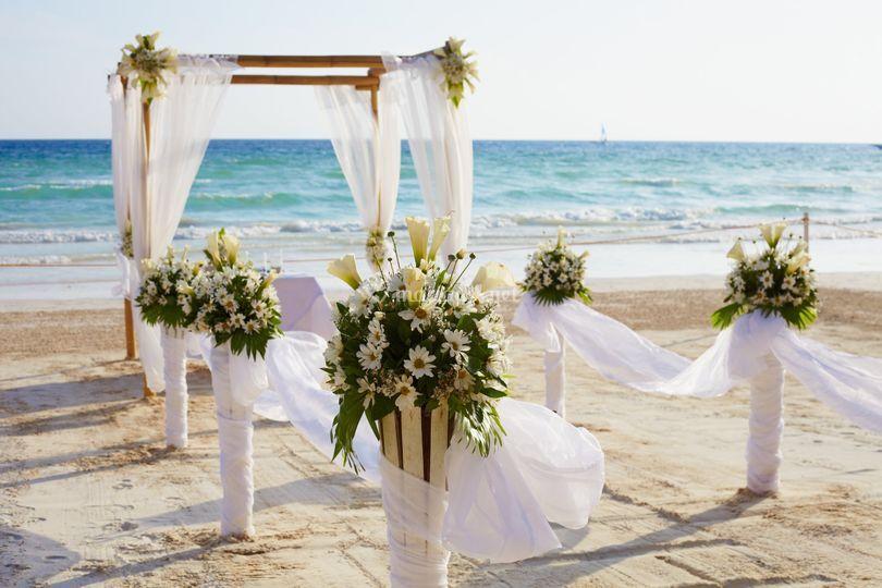 Arche mariée