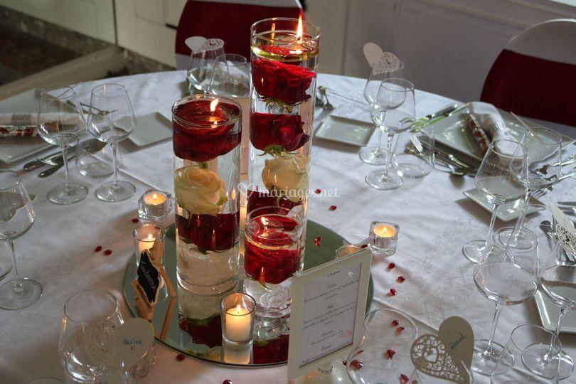 Roses rouges et lumière