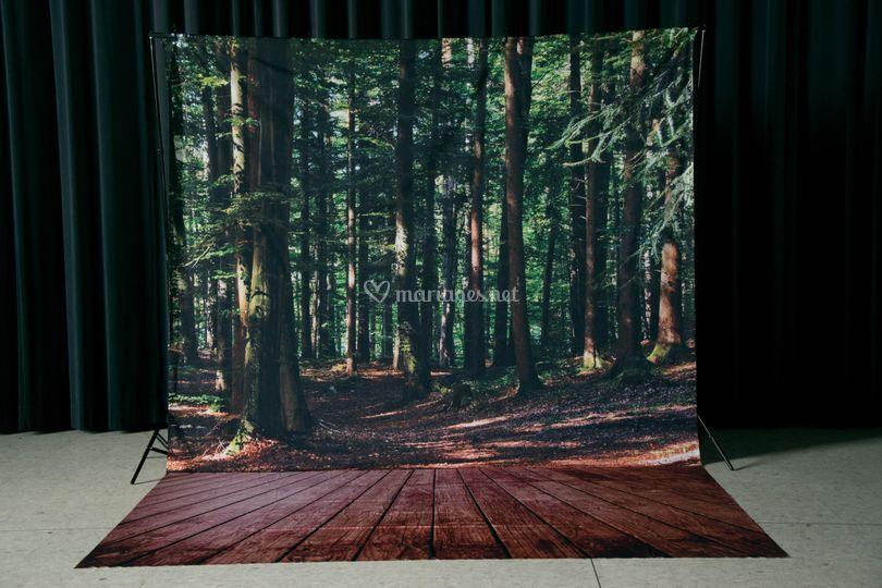 Fond forêt
