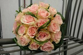 Fleurs D'Ici Et D'Ailleurs