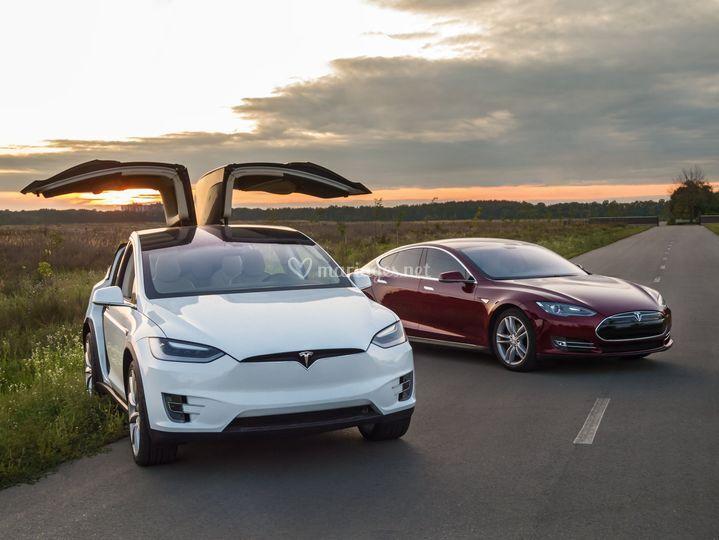 Tesla Model X & S