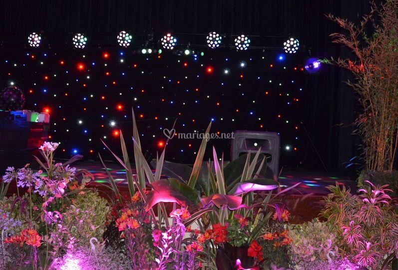 Eclairages scène et plantes