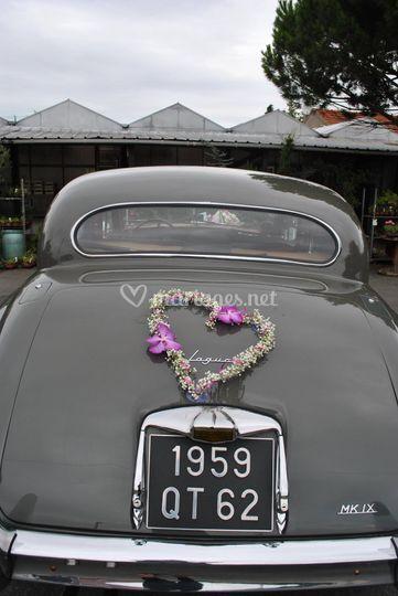 Arrière de voiture ancienne