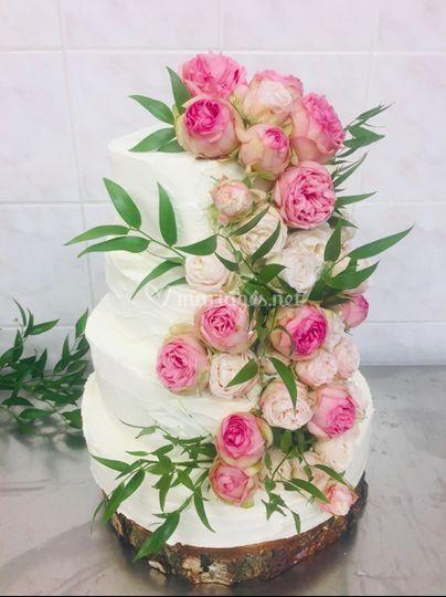 Cascade de rose