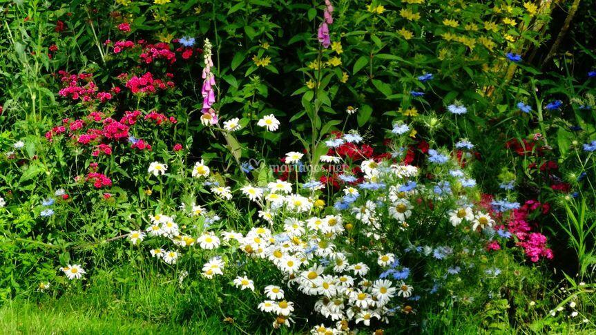Les extérieurs : le parc fleuri
