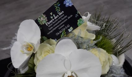 Fleurs des iles 2