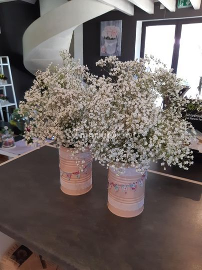Bouquet de gypsophile 10€