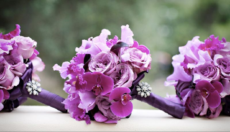Mariage So purple, Si Chic !