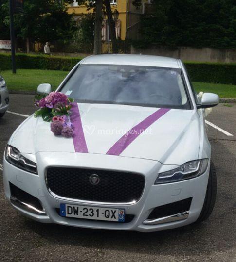 jaguar mariage violine sur allo maryline - Location Voiture Mariage Haut Rhin