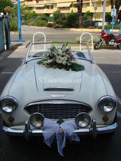 Décoration voiture mauve blanc