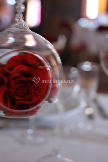 Bulle rose rouge