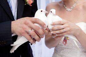 Pigeondemariage