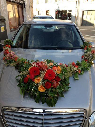 Décor voiture automne