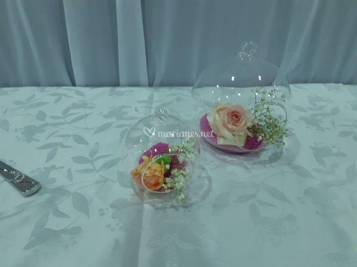 Les roses et la transparence