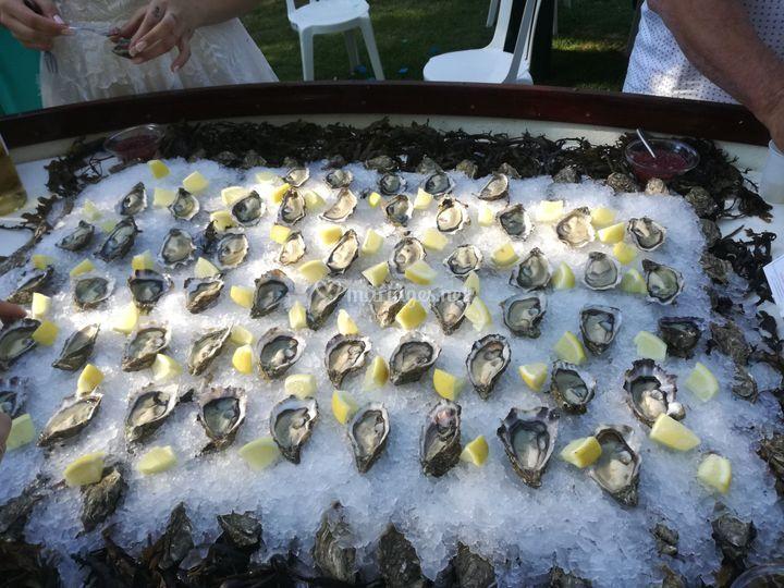 Atelier huîtres