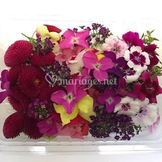 Fleurs comestible