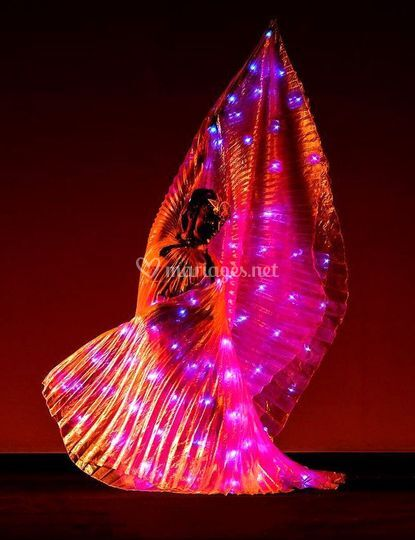 Ailes papillon à LEDs