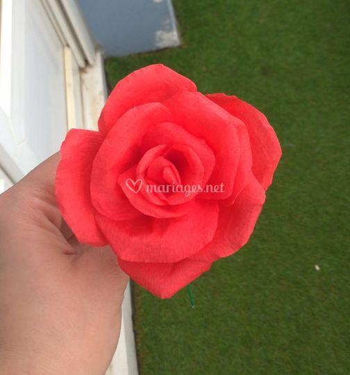 Rose rouge en crépon