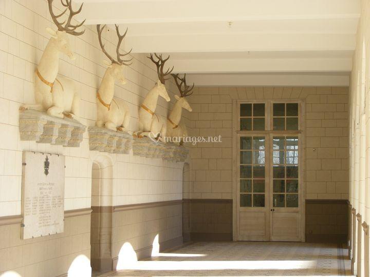 La galerie des cerfs