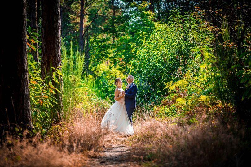 La forêt des mariés