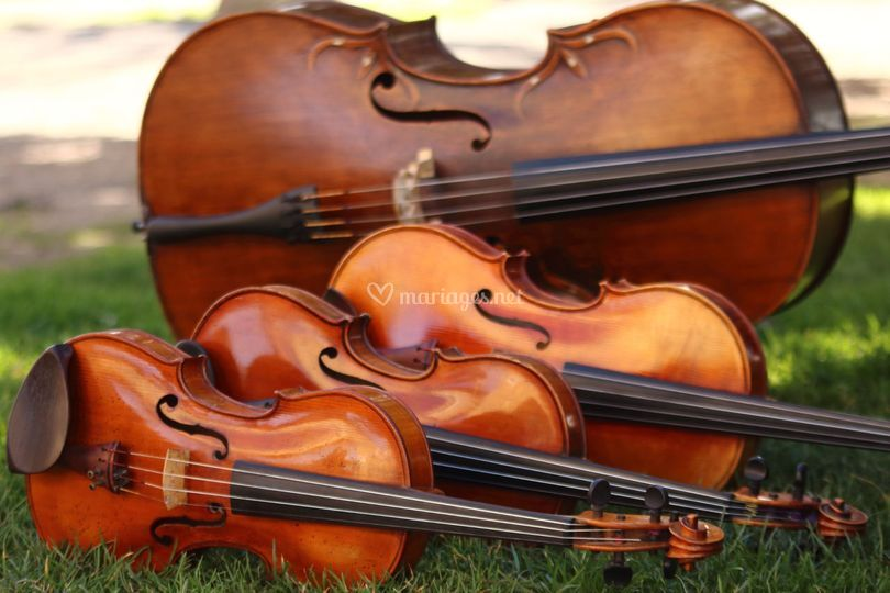 Les 4 instruments
