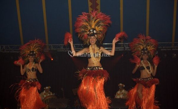 Nos danseuses Polynésienne