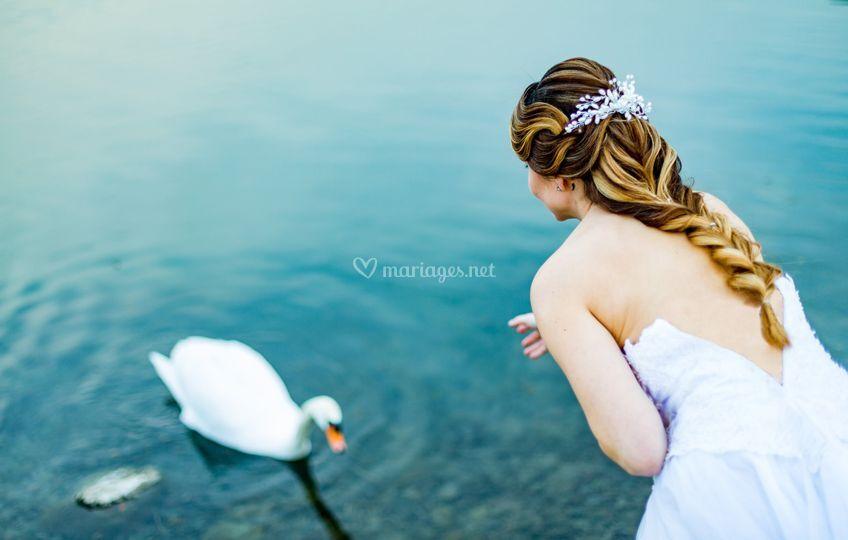 La mariée et le Cygne