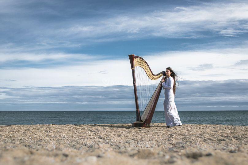 Evélina Simon - harpiste