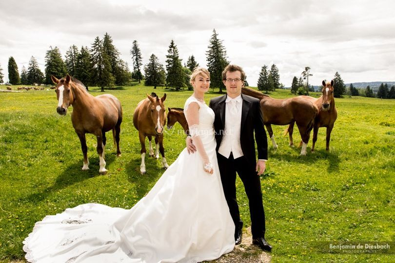 Mariage en pleine nature en Suisse