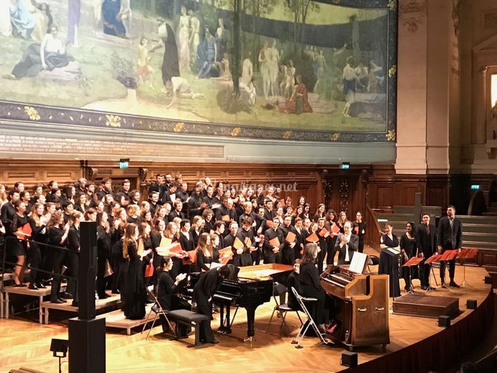La Sorbonne, Paris . Harmonium