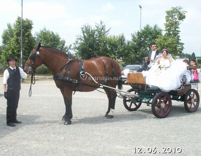 Transport des Mariés à Rezé avec Nuance