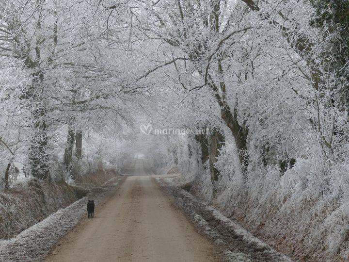 Arrivée  au hameau l'hiver
