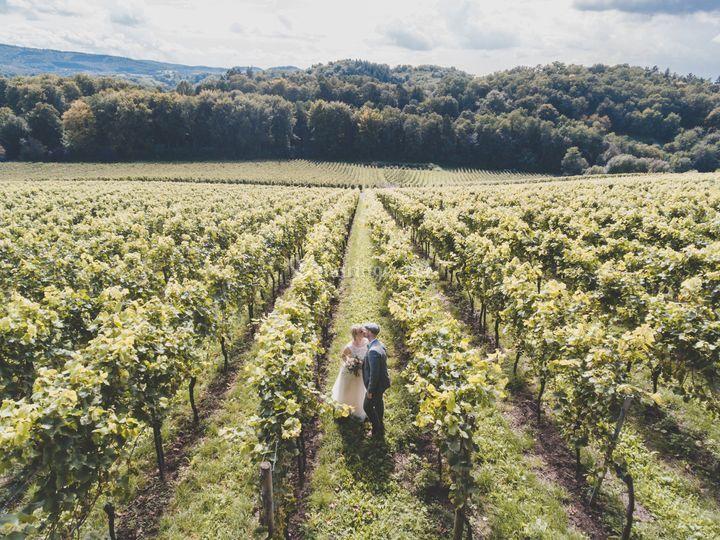 Les mariés dans les vignes