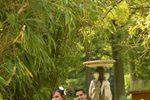 Robe de mariéeCeremony Day