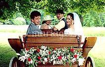 Votre mariage en calèche