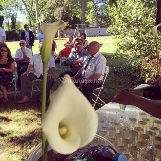 Cocktail - mariage