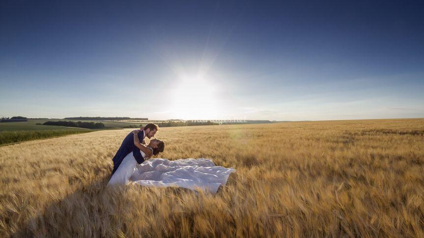 Dans un champ de blé