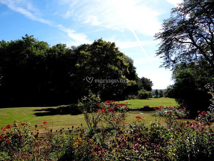 Le parc, les fleurs