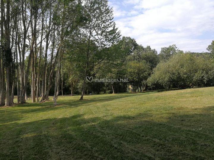 Un domaine de 6 hectares