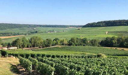 Domaine de Romery en Champagne 1