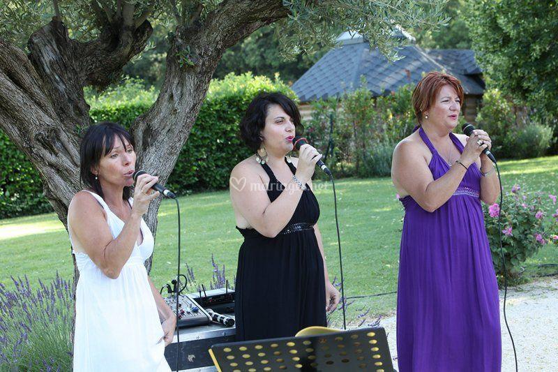Gospel Sisters