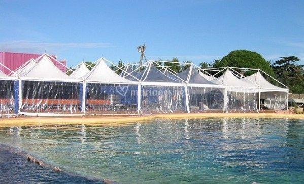 Tentes 5mx5m toits transparents